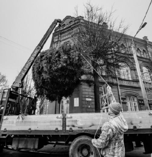 В Смоленске новогоднюю ёлку доставили на балкон детского дворца творчества (видео)