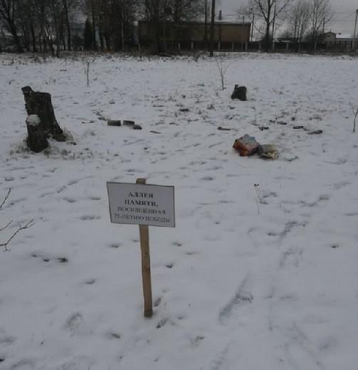 В Смоленской области вандалы запустили фейерверки на Аллее Памяти