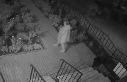 Женщина украла цветы с клумбы и попала на видео