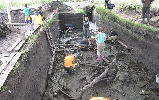 Группа археологов обнаружила жилище древних «рыбоедов»